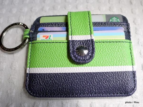 In a Snap Card Case / Lucky Stripe